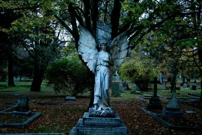 grave marker at pegram county cemetery