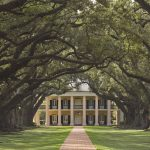 photo shows large oaks leading up to an antebellum plantation mansion